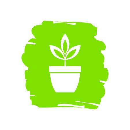 Plant in pot, vector icon