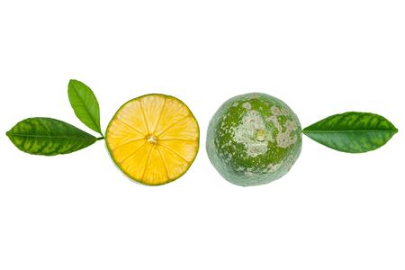 Lemon: Rangpur lime sliced ??on half with some apparent seeds