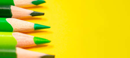 Vibrant banner with green pencils on yellow background. Education and writing concept. Focus on one pencil as symbol of concentration. Copy space.