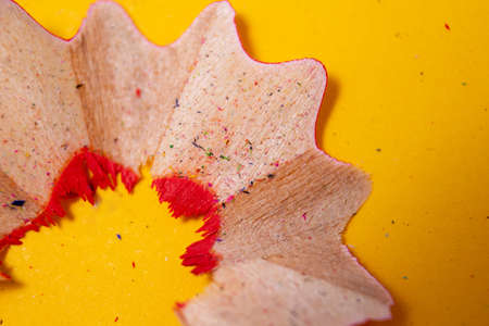 Vibrant macro photo of red pencil shavings. Creativity equipment. Drawing and education concept. Close-up wood crayons shavings.
