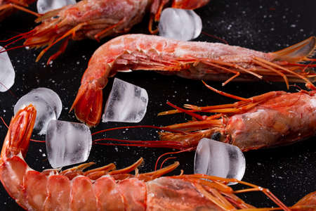 Large red shrimp with ice and see salt on black background. Close up. Banque d'images