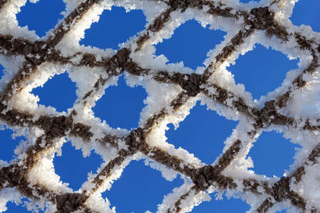 Net covered with snow. Natures minimalism. Close-up.