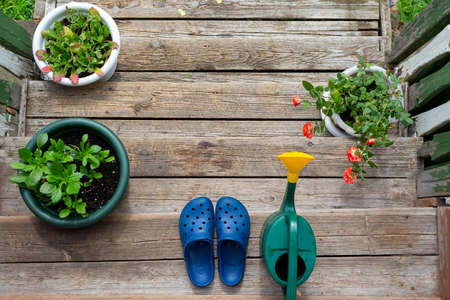 Rural scene. Rubber slippers, watering can, flowers.