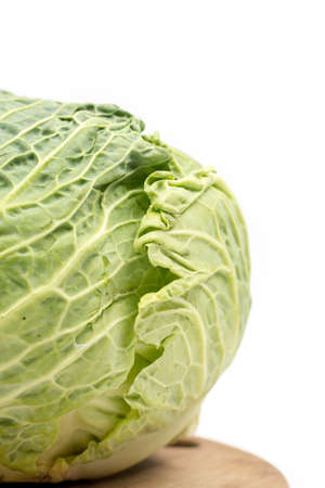 Head of green cabbage with copy space.