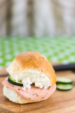 Shallow depth salami sandwich with blurred background