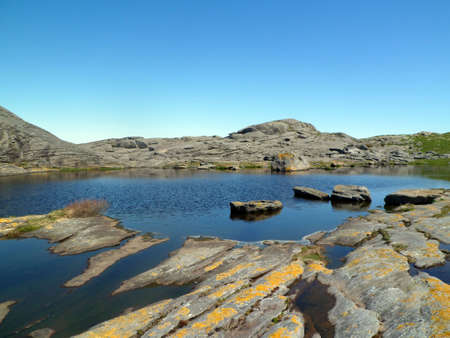 Coastal rocks and water after low tide. Island of Rennesoy. The province of Rogaland. Norway. The rocks are covered with yellow lichen.