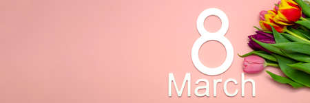 March 8, international womens day. Number eight against a background of tulips against a pink uniform background, place for text.