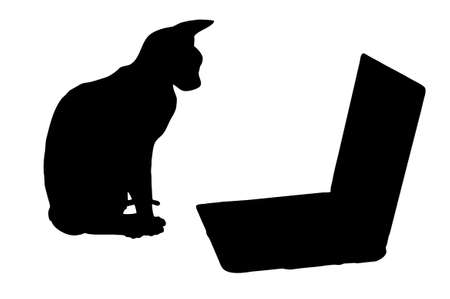 Cat sits near laptop. Black silhouettes isolated over white. Stock Photo - 5196652