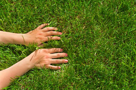 Woman`s hands on green grass. Palms down. photo