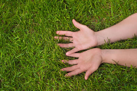 Woman`s hands on green grass. Palms up photo