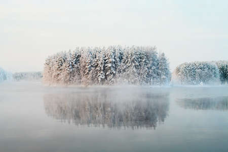 Unfrozen lake in the winter forests of Karelia, Russia. Black water and snowy brunches photo