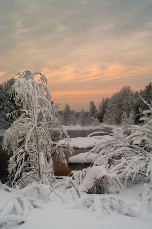 Unfrozen lake in the winter forests of Karelia, Russia photo