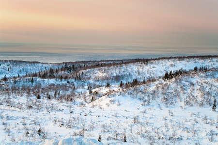 tundra: Polar night in mountains in northern tundra, Russia