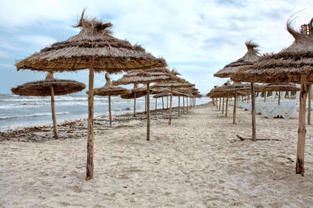 Palm leaf parasols on empty sandy beach during storm on sea photo