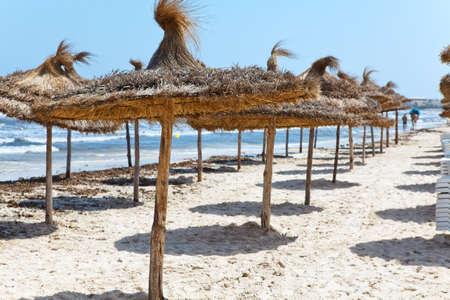 Palm leaf perasols on sandy beach  Nobody photo