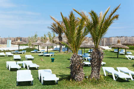 Hotel territory with white plastic sun beds on green grass photo