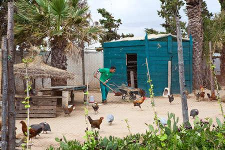 granger: MONASTIR, TUNISIA - CIRCA MAY 2012: Manual worker in henhouse in hotel territory on circa May, 2012 in Monastir, Tunisia