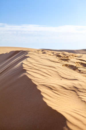 Sand dunes in Sahara desert with blue sky Stock Photo - 16797636