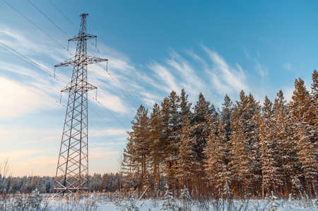 outdoor electricity: Power high-voltage poles in winter evergreen forest Stock Photo