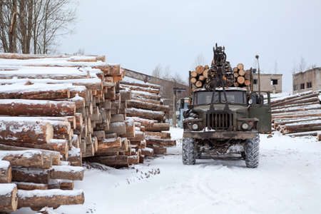 Log loader track with timber in lumber mill in winter season photo