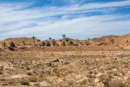 dry stone: Mountain terrain in Africa with palm trees