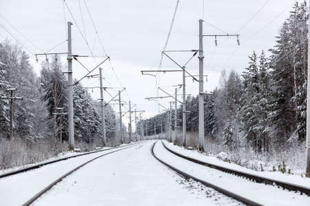 mainline: Empty electric mainline railroad in winter forest