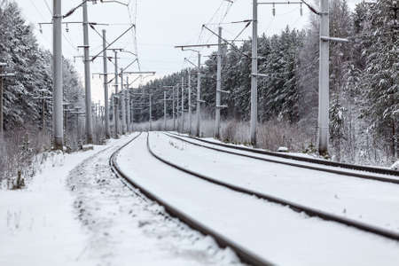 forest railway: Empty electric railway line in winter forest Stock Photo