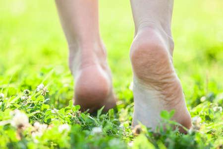 Los pies descalzos sobre la hierba suave verano