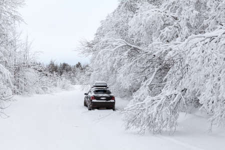polar life: Black car standing on winter country road on roadside