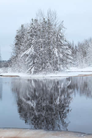 Snow-covered trees reflection in lake water at winter season photo