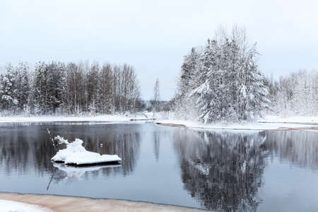 Warm lake in forest during strong freeze photo
