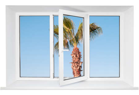 pvc: White plastic triple door window with palm tree on blue sky through glass. Isolated on white background. Opened door Stock Photo
