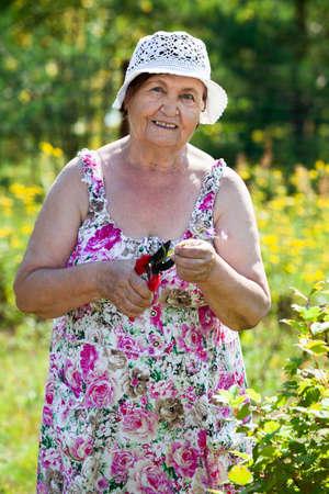 pruner: Happy smiling senior woman standing with pruner in own garden