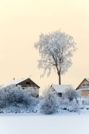 Village on frozen lake shore with snow covered roofs and trees at winter photo