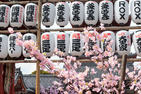 senso ji: TOKYO, JAPAN - CIRCA APRIL, 2012: Many paper lanters with Japanese characters and sakura trees are in Sensoji shrine. The Senso-ji is an ancient Buddhist temple located in Asakusa district