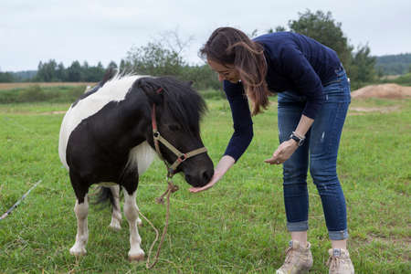 Young Caucasian woman feeding little pony carrot at farm