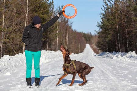 persona saltando: Mujer joven que juega con el perro doberman en la carretera de invierno en día soleado