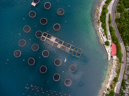Structure of fish farm, aerial view. Boat for fish feeding. Aquaculture of Montenegro. Aerial view