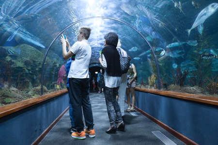 aquarium visit: PUERTO DE LA CRUZ, TENERIFE, SPAIN-CIRCA 2016, JAN: Visitors make pictures in underwater tunnel of the Loro Parque Aquarium. Loro Parque is the best zoo in Europe Editorial