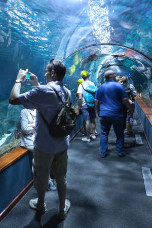 aquarium visit: PUERTO DE LA CRUZ, TENERIFE, SPAIN-CIRCA 2016, JAN: Many visitors make photos in underwater tunnel of the Loro Parque Aquarium. Loro Parque is the best zoo in Europe