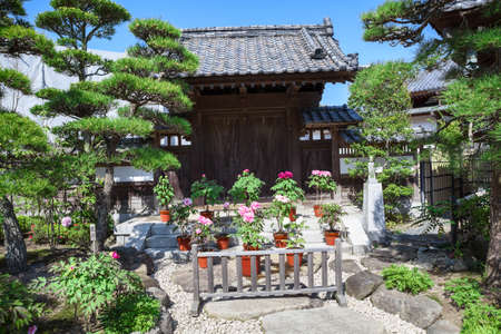 dera: KAMAKURA, JAPAN - CIRCA APR, 2013: Spring garden with blooming flowers is in the Hasedera shrine. The Hase-kannon (Hase-dera) is one of the Buddhist temples in the Kanagawa Prefecture