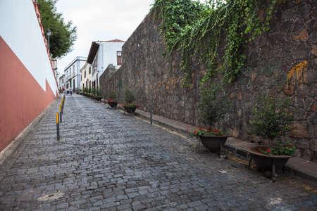 Wall is in narrow street near the Iglesia Mayor de San Marcos with Dracaena draco tree. Icon De Los Vinos town, Tenerife, Canary, Spain