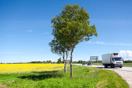 Light-duty truck and cars driving amount meadow with yellow flowers, country higway; Stock Photo