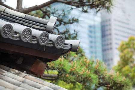 Part of ancient Japanese roof against evergreen pines and modern buildings on background