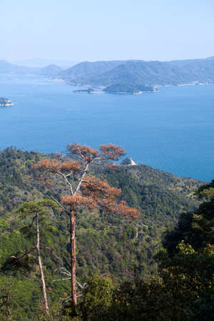 View at the sea and island from observatory near Shishiiwa Station. It is a great viewpoint area of the Setouchi dotted islands. The Itsukushima (Miyajima) island, Japan Stock Photo