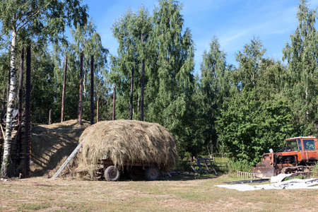 Haystack is on wooden waggon and broken rusty tractor vehicle are on rural backyard in summer forest