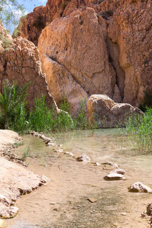 Clear water in Chebika mountain oasis on the border of the Sahara. Lake with line from stones in water. The Djebel el Negueb, the Toseur, western Tunisia, Africa 写真素材