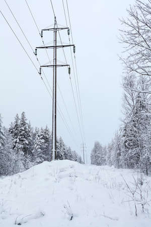 Power supply high voltage line is in snowy winter forest 免版税图像