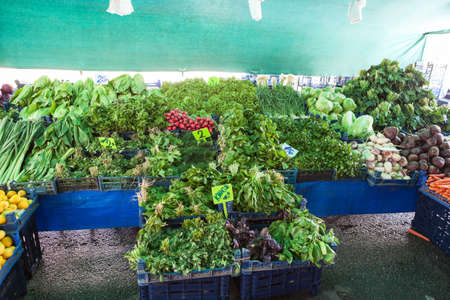 Cilantro, lettuce leaves and other leafy greens are in plastic boxes on sale. Fruit and vegetable marketplace is in the Alanya, Turkey