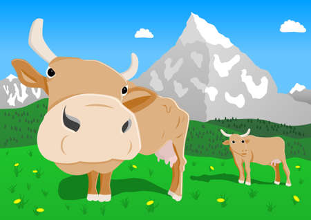 tyrol: cows in the alps